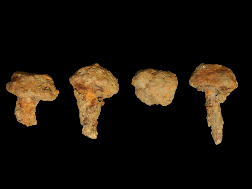 These four hobnails were found in the fill of a cremation vessel