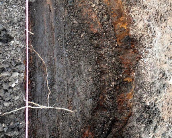 wooden barrel archaeological find